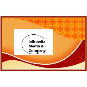 Lefkowitz Martin & Co Inc