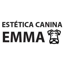 Estética Canina Emma