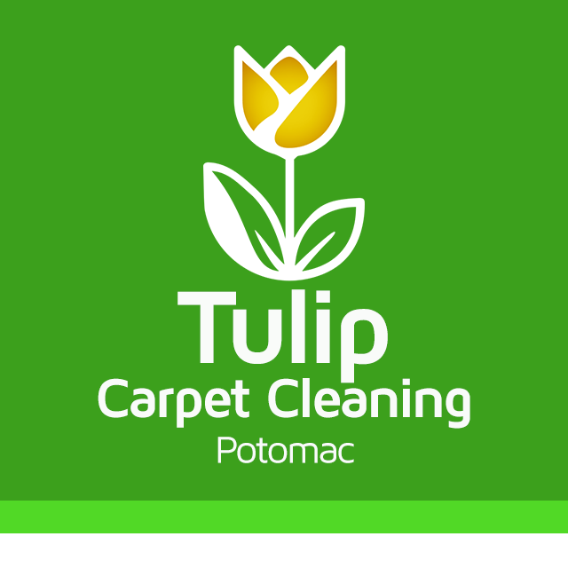 Tulip Carpet Cleaning Potomac