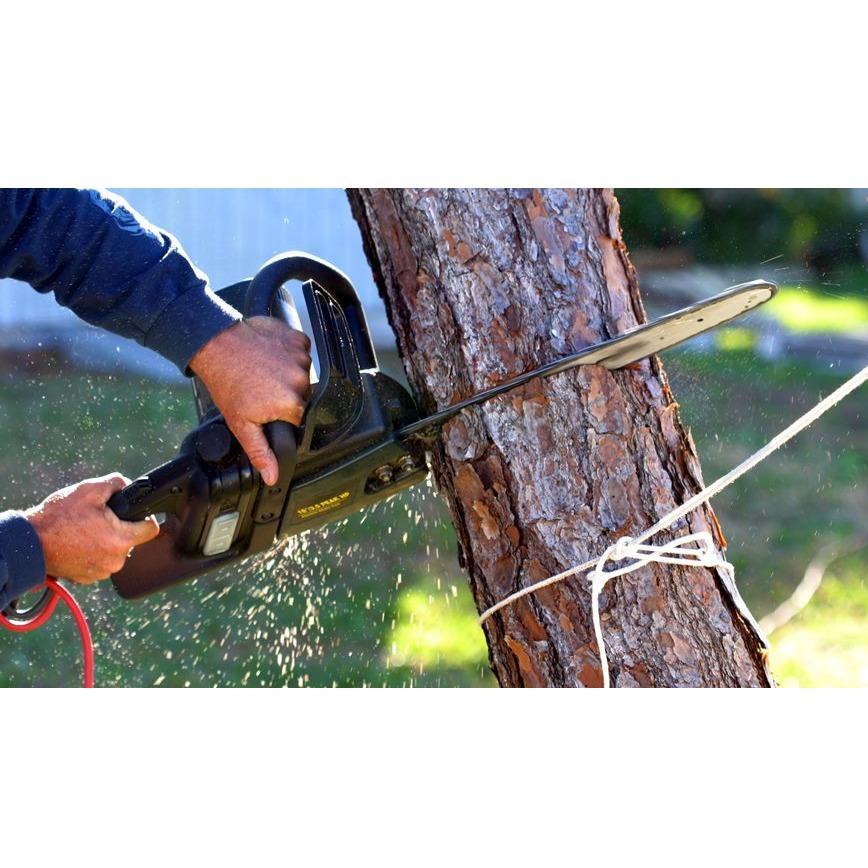 Mayorga Landscaping & Tree Service
