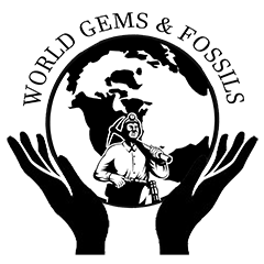 World Gems and Fossils