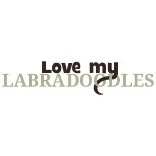 Love My Labradoodles
