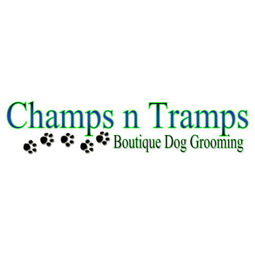 Champs N' Tramps