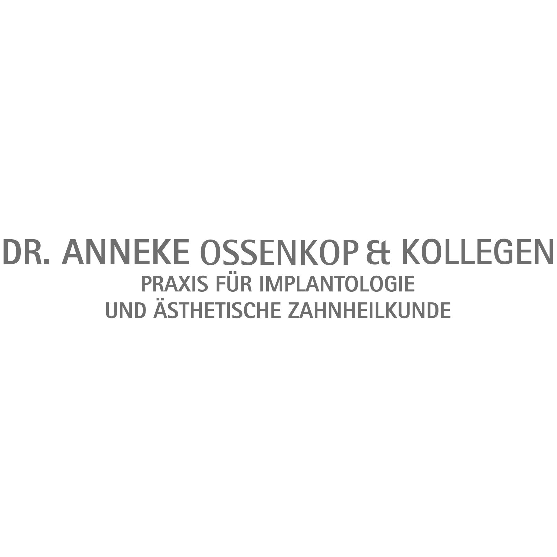 Bild zu Praxis Dr. Anneke Ossenkop, Dr. Sabine Bruns & Kollegen in Braunschweig
