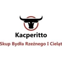 Skup Bydła Rzeźnego Oraz Cieląt Kacperitto