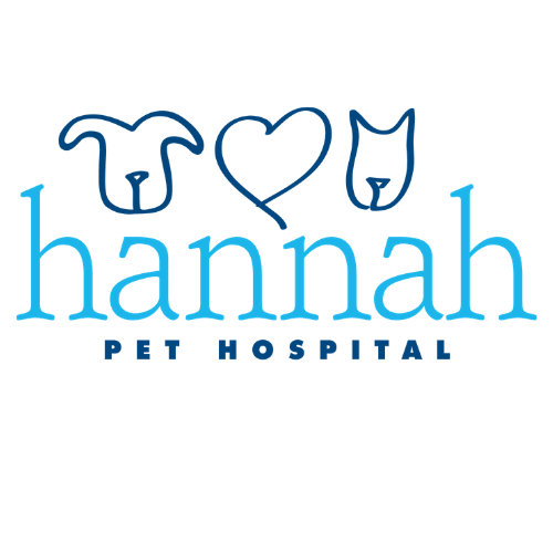 Hannah Pet Hospital