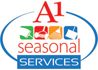 A-1 Window Cleaning