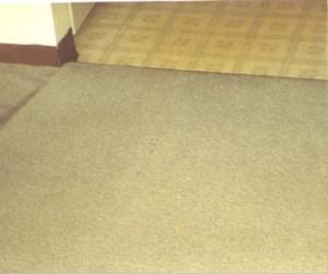 Image 5   Simply Clean Carpet Care