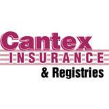 Cantex Insurance & Registries Inc