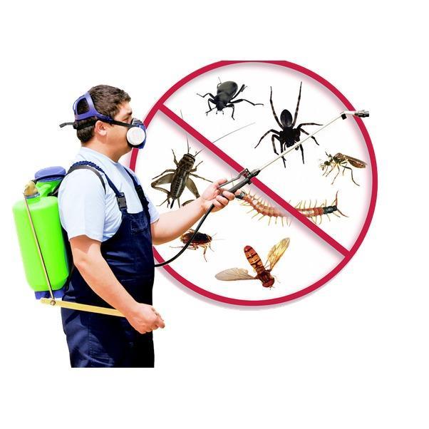 Homestead Wildlife Solutions