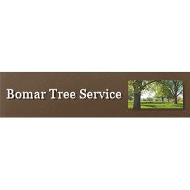 Bomar Tree Service - Bakersfield, CA - Tree Services