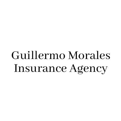 Guillermo Morales - State Farm Insurance Agent