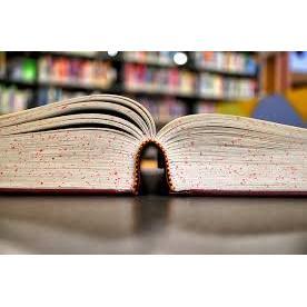 Crabbe Reader Book Store & Yarn Shop