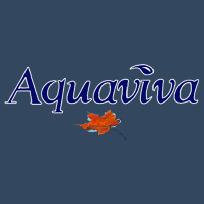 Aquaviva Pool Cleaning
