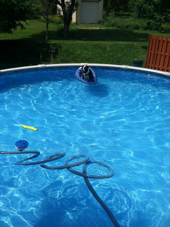 Pools Plus 1522 Avenue C Council Bluffs Ia Swimming Private Mapquest