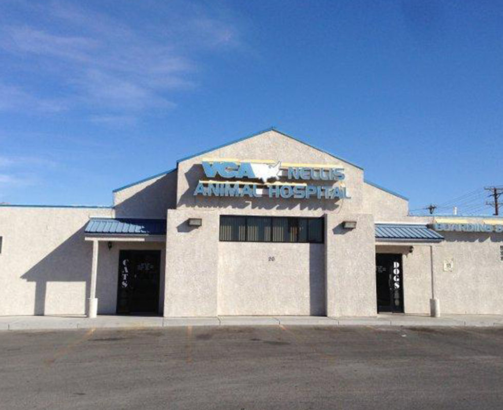 Veterinary Emergency and Critical Care in Las Vegas, NV ...