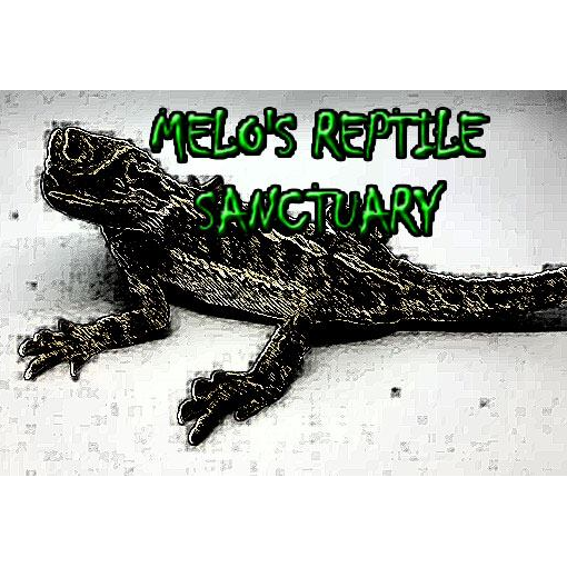 Melo's Reptile Sanctuary - Fillmore, IN 46128 - (765)702-0504 | ShowMeLocal.com
