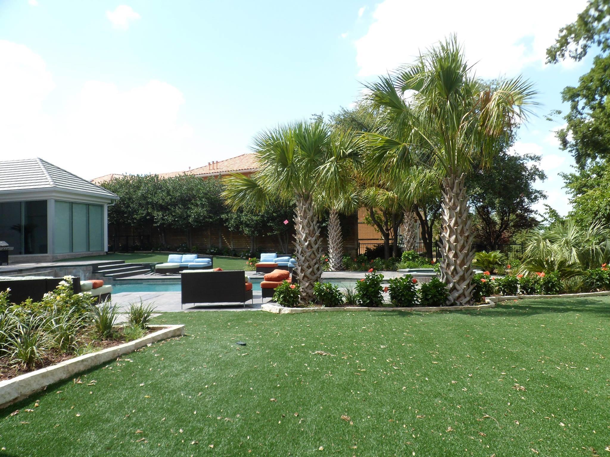 Texas palm trees and irrigation llc dallas texas tx for Home turf texas landscape design llc