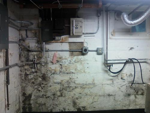 zablocki waterproofing in hartland wi 53029
