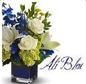 Ali Bleu Flowers