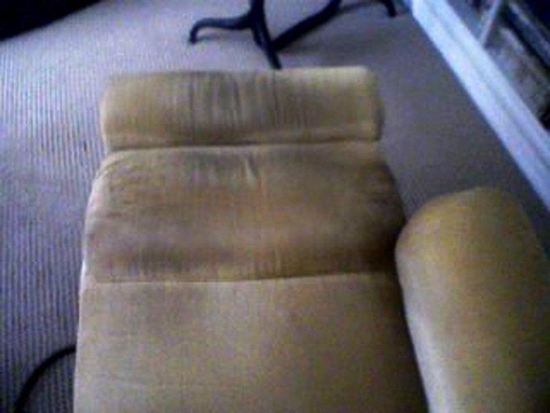 Harpers Carpet Cleaning Pasco Hillsborough San Antonio