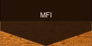 Micro Finance International