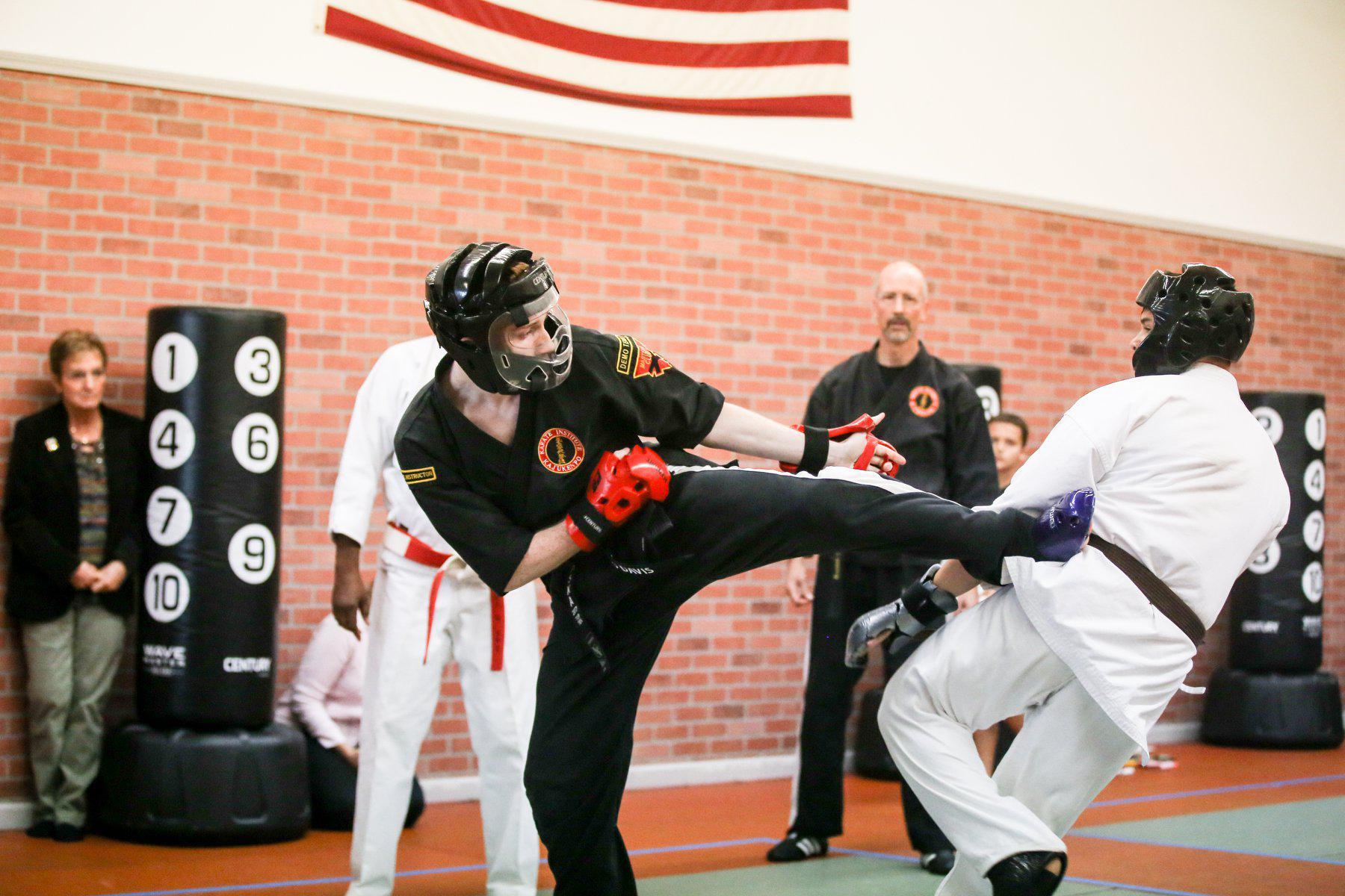 Karate Institute of Mentor