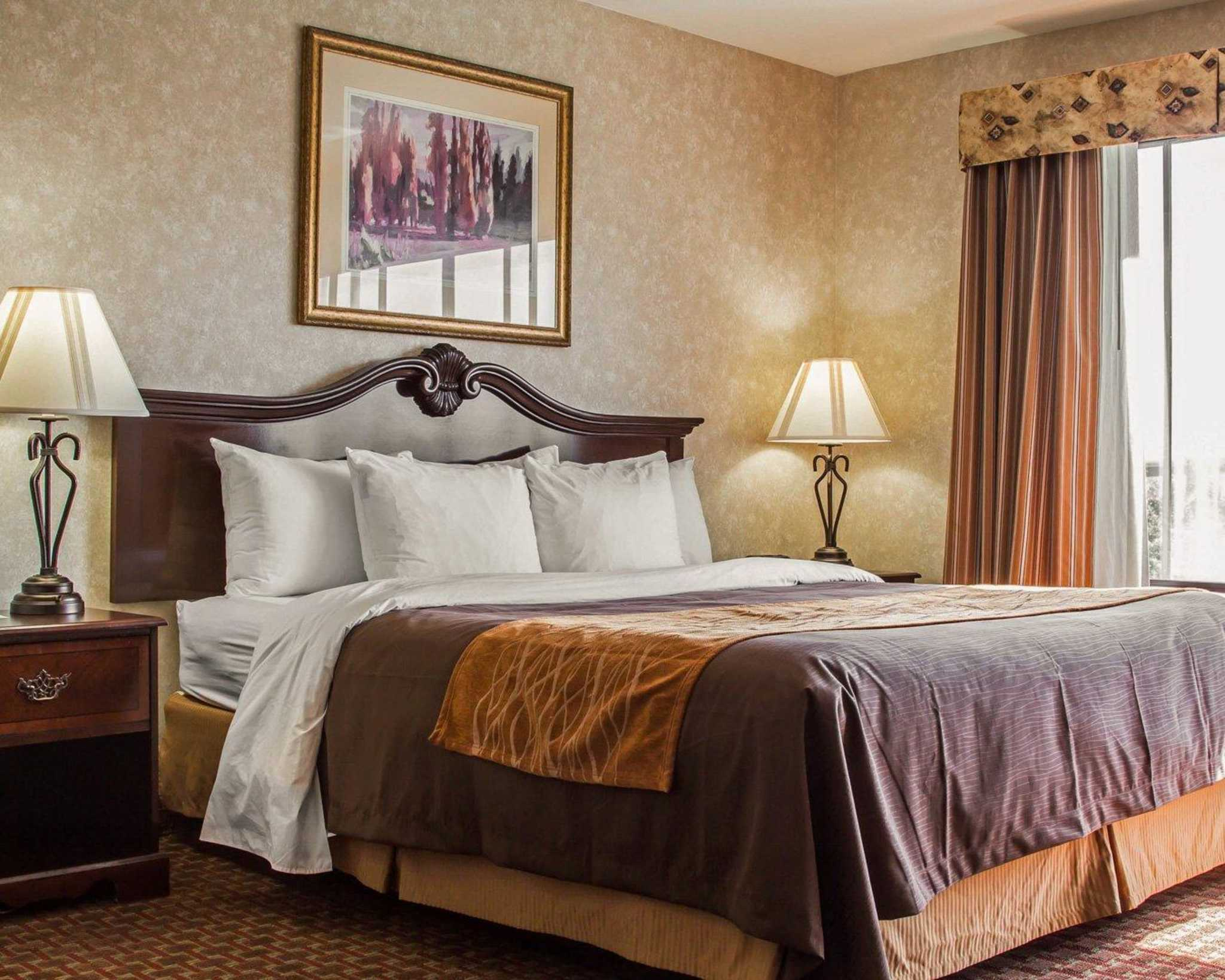 Comfort Inn Silicon Valley East, Fremont California (CA ...