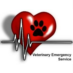 Veterinary Emergency Service