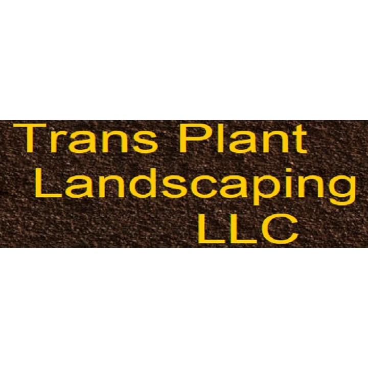 Trans Plant Landscaping LLC