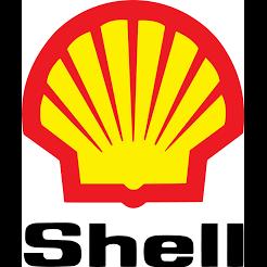 Knapp Street Shell Service Station, Inc.
