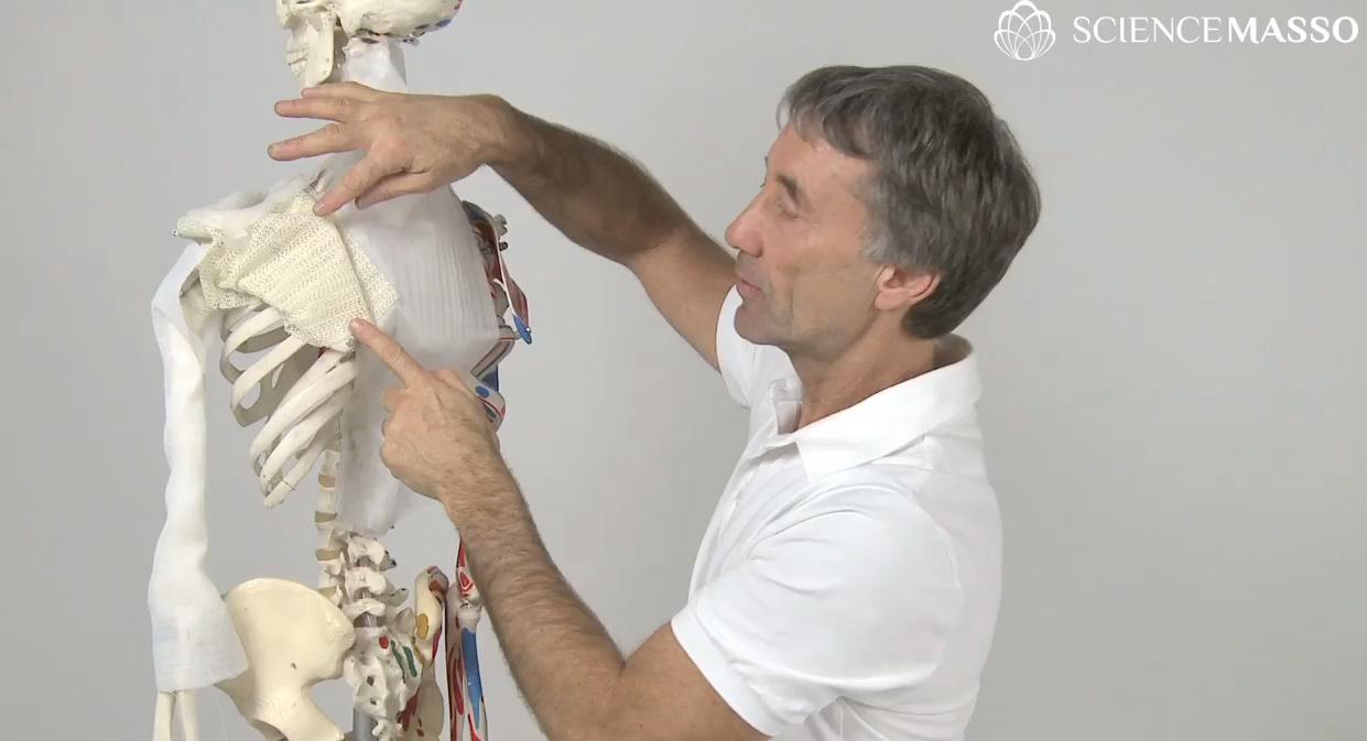 Ostéopathie Jacques Tétreault