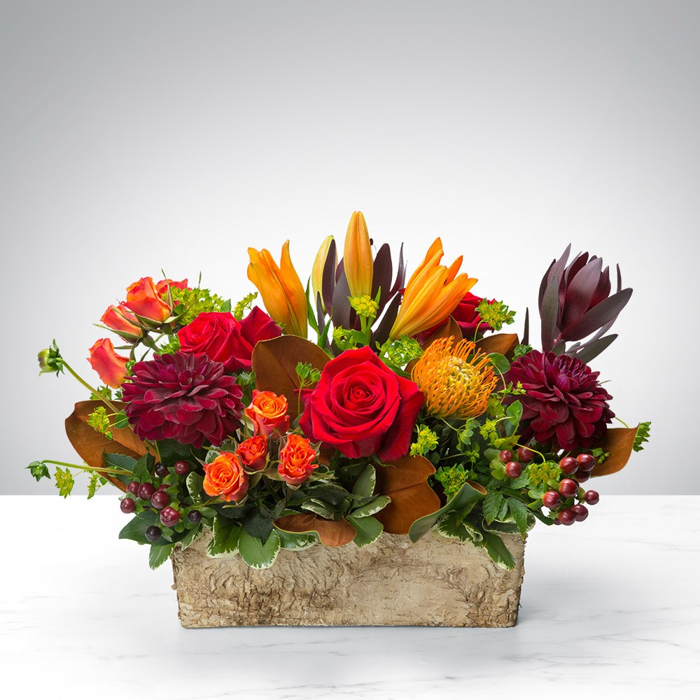 citywide flower plants