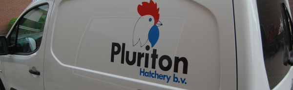 Pluriton BV