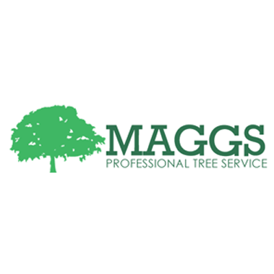Maggs Professional Tree Service - Franklin, OH - Tree Services