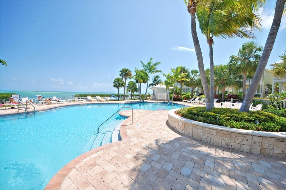 Dabco pools inc dolphin home services in naples fl for Pinch a penny pool pump motors