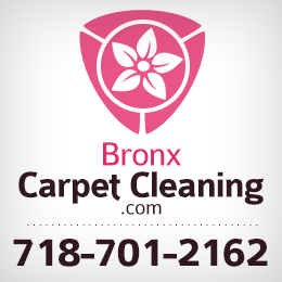 Carpet Cleaning Bronx