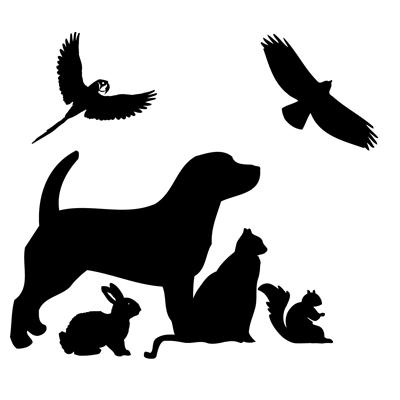 Spruce Hill Veterinary Clinic - Springfield, MA - Veterinarians