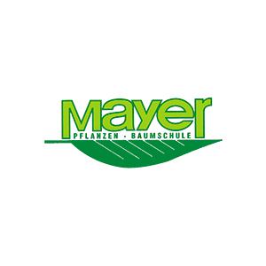 Mayer GmbH Pflanzen - Baumschule
