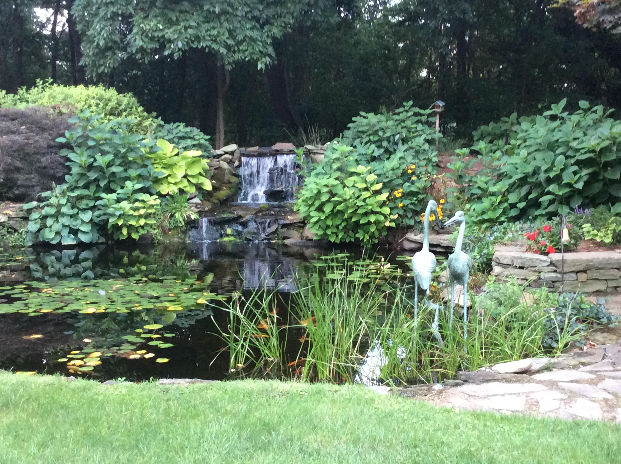Joe antine landscape design contractor bergen county for Xd garden design