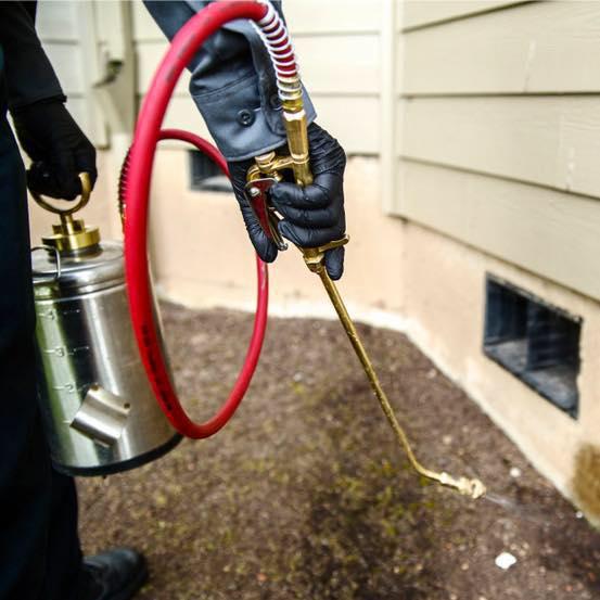 Destroy Pest Control, LLC