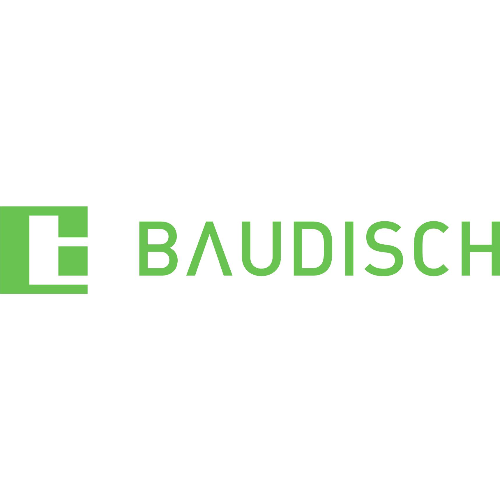 Bild zu Baudisch Electronic GmbH in Wäschenbeuren