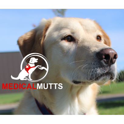 Medical Mutts - Indianapolis, IN - Pet Obedience Training