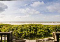 Oceanfront Beach Rentals