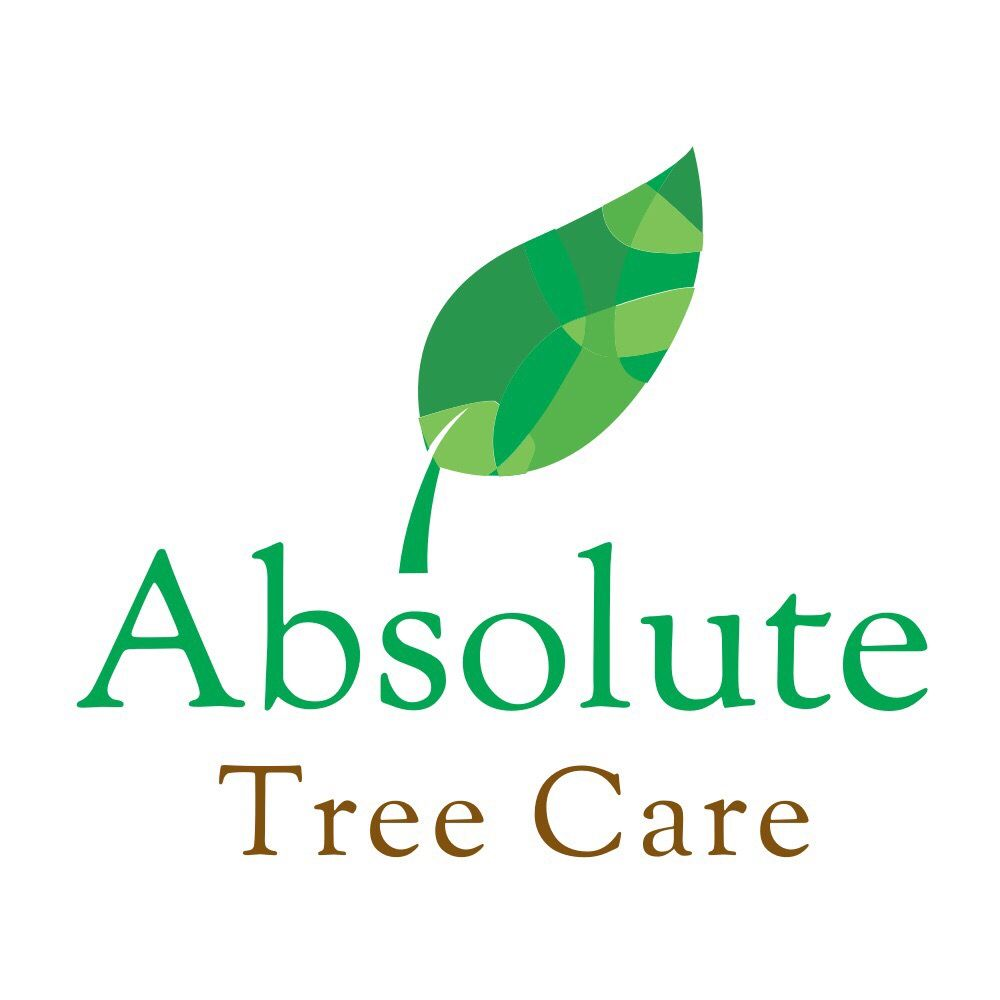 Absolute Tree Care - Littleton, CO 80120 - (720)213-5957 | ShowMeLocal.com
