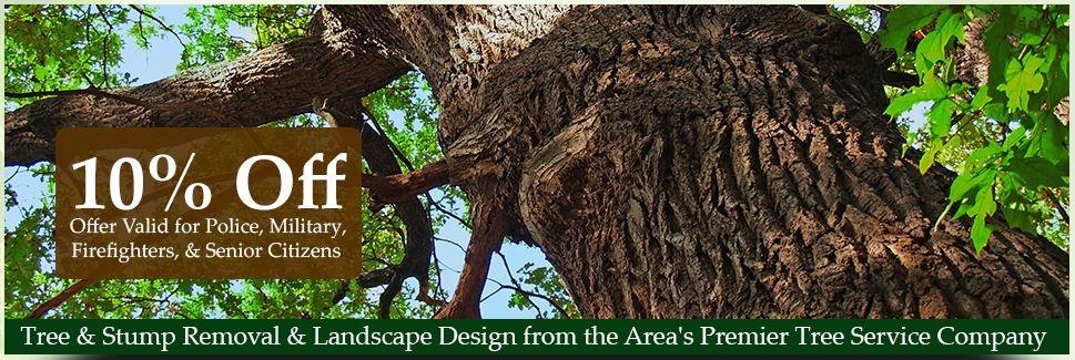 All Seasons Tree & Landscaping