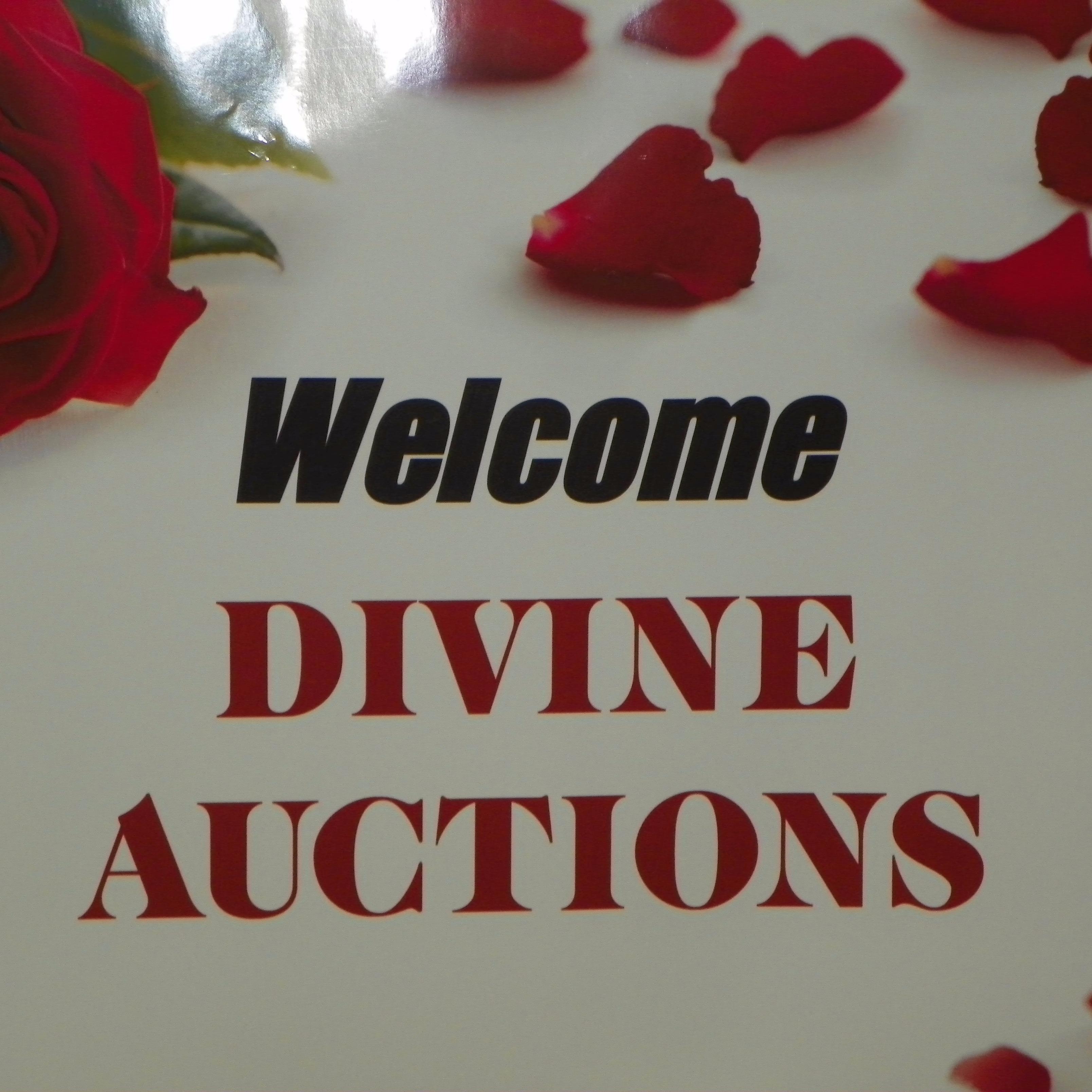 Divine Auctions