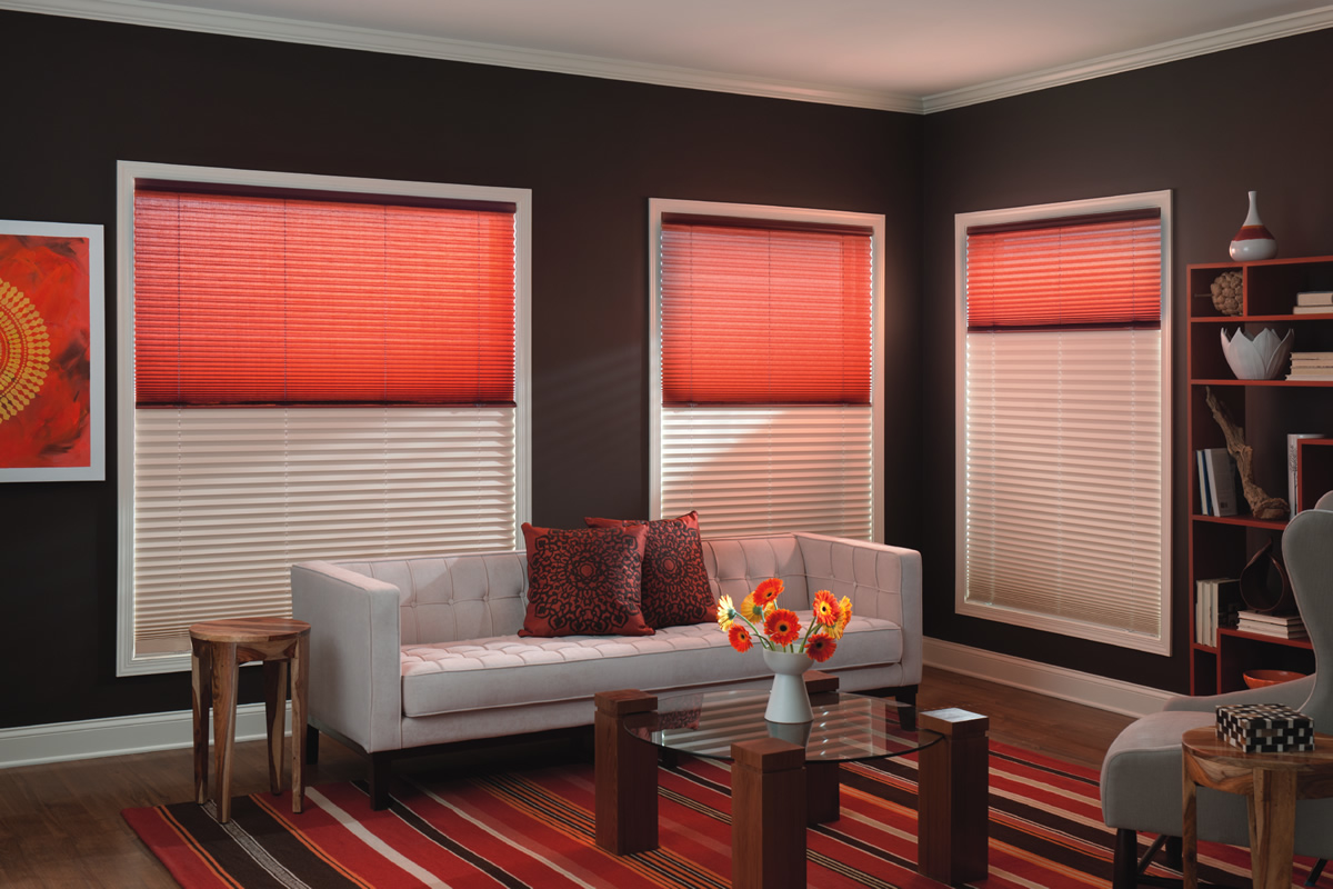Total Blinds Amp Window Tinting Albuquerque New Mexico Nm