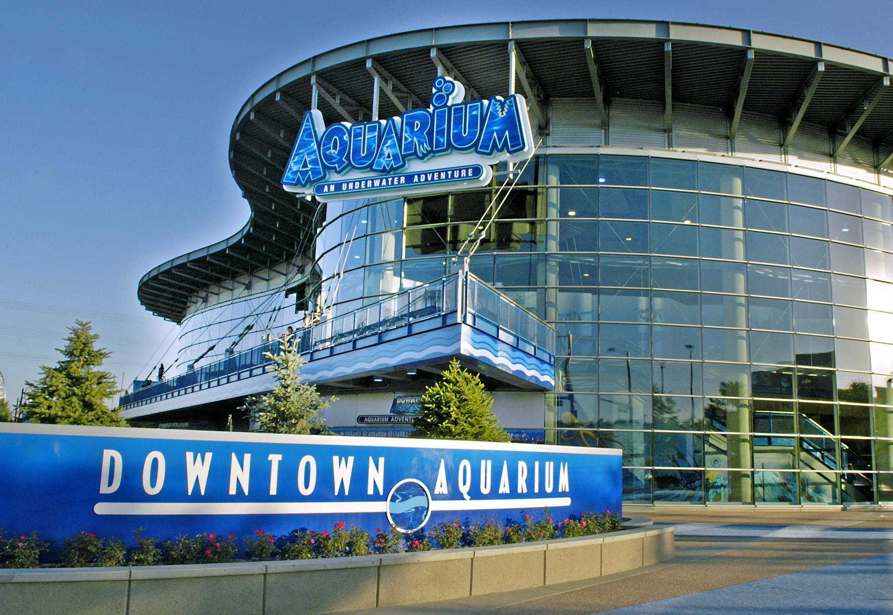 Downtown aquarium coupons near me in denver 8coupons for Fish store denver
