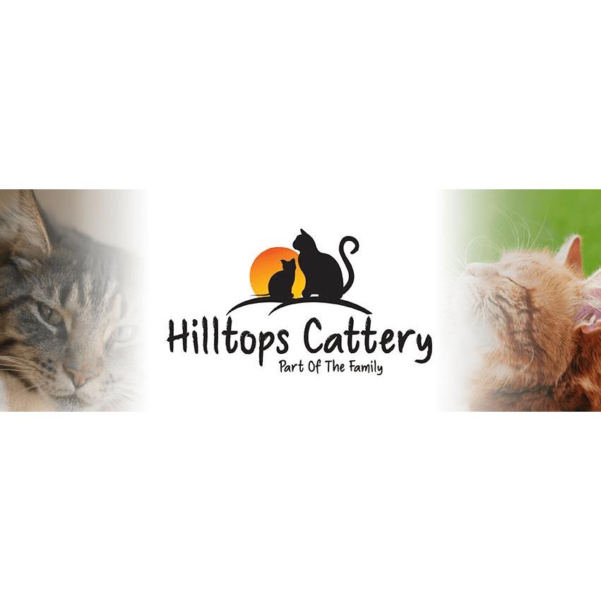 Hilltops Cattery Herne Bay 01227 360271